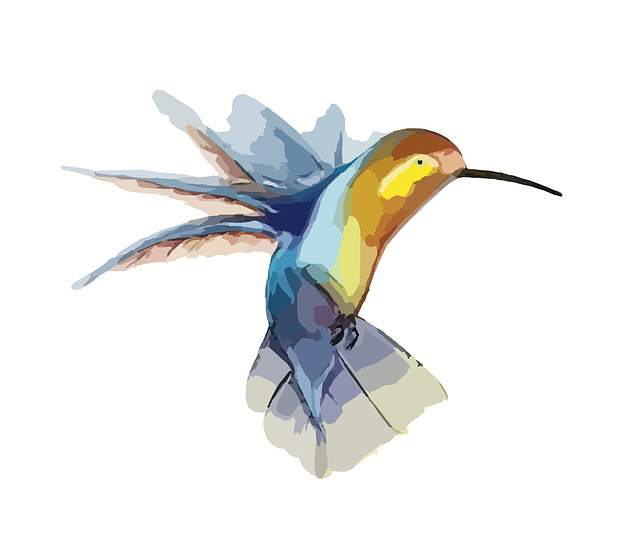 hummingbird-295026_640